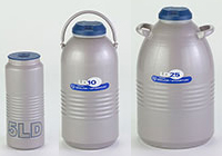 Large Cryogenic Dewar Flasks