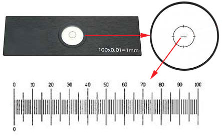 Standard Series Stage Micrometers for Light Microscopy